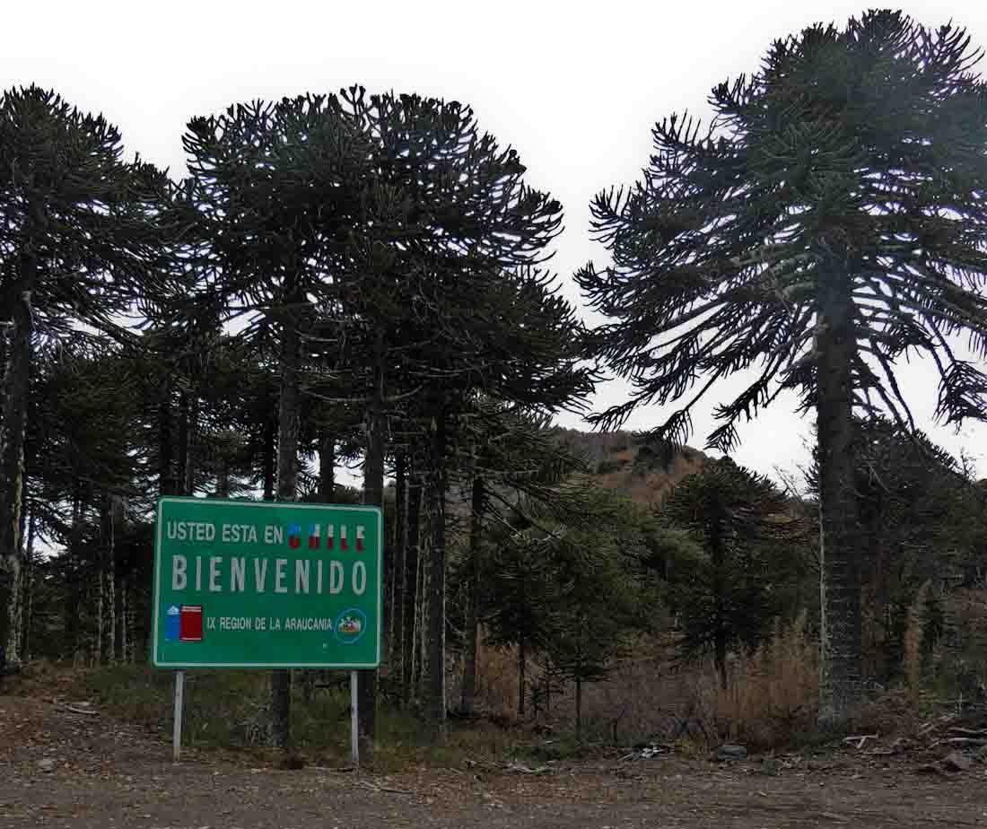 Forasteros en Chile