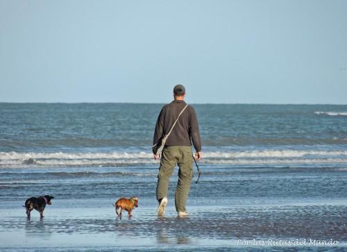 Ale y las Tuchis paseando en la playa de Bahia San Blas