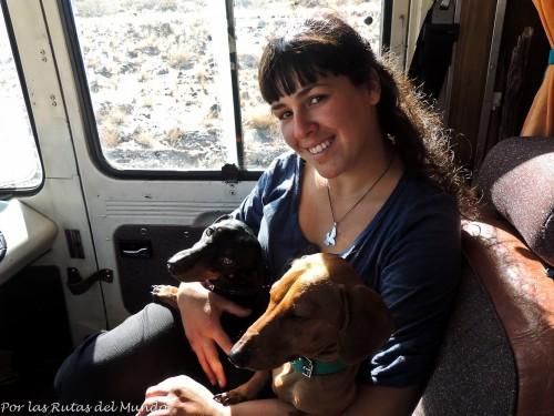 Vir, Pioja y Pumba en el Forastero en Mendoza