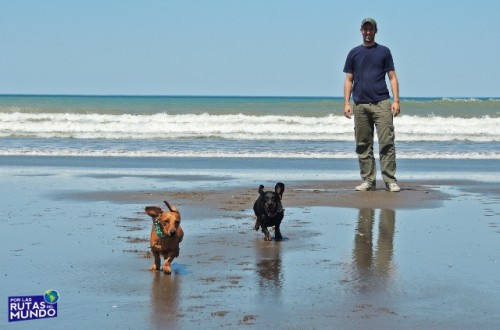 Pioja y Pumba corriendo en la playa de Orense