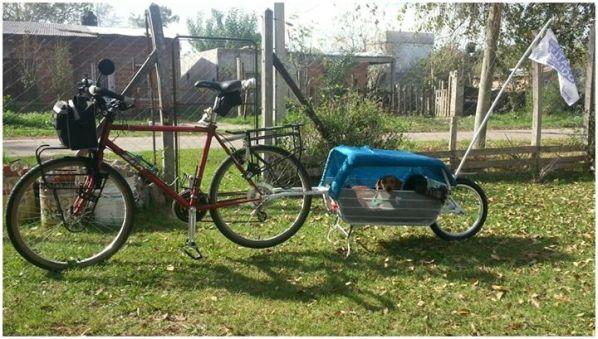 viajar en bicicleta con perros pioja y pumba