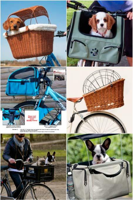 pinterest viajar en bicicleta con perros