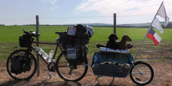 Viajar en bicicleta con perros