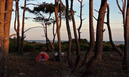 Pequeñas historias y grandes anécdotas del Uruguay (1)