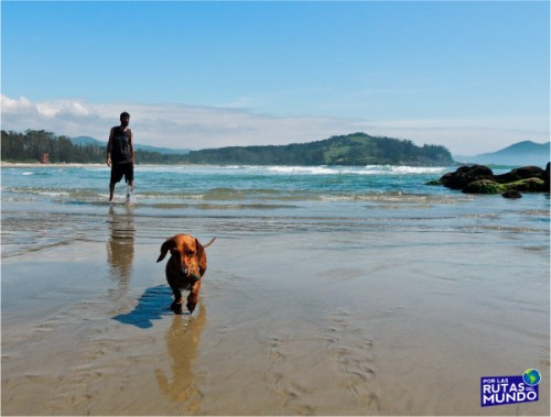 praia-do-rosa-hogar-brasilero-pumba-en-praia-ouvidoor