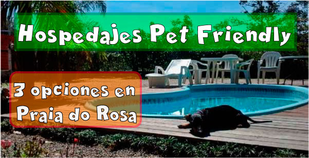 3 opciones de hospedaje Pet Friendly en Praia do Rosa