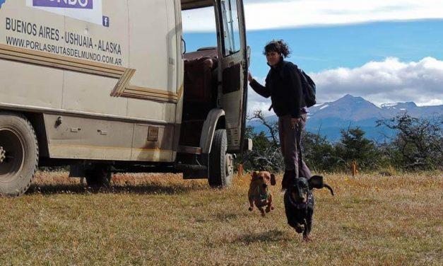 ¿Por qué viajan con perros?