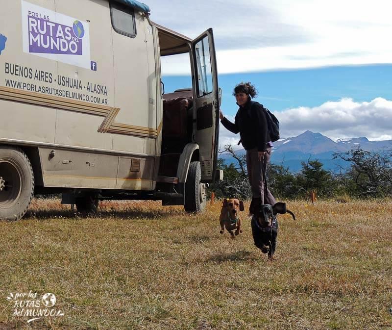 por que viajan con perros o por que viajamos con pioja y pumba