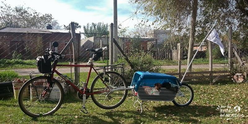 por-las-rutas-del-mundo-perros-en-bicicleta-con-carrito