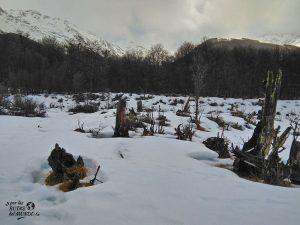 Valle de Lobos ushuaia en invierno