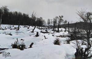 aventura ushuaia en invierno