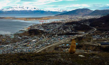 Qué hacer en Ushuaia en invierno